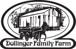 DollingerVector-250