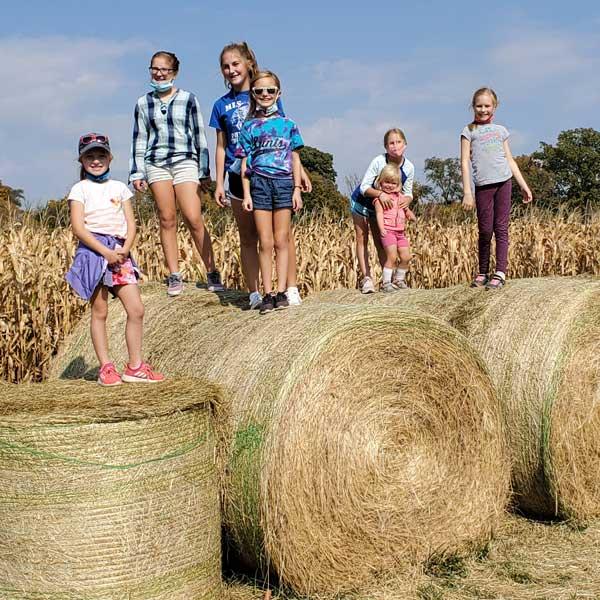 kids-on-hay