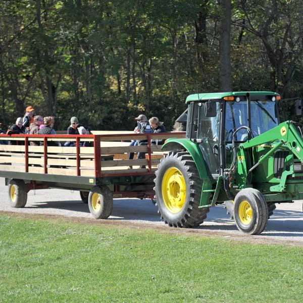 hay-rideDollinger-(183)